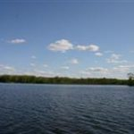 Pickerel Lake Water